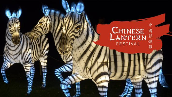 Chinese Lantern Festival Week 8 Fort Mill Area Event By Fort Mill Connections